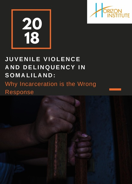 Juvenile Violence and Delinquency in Somaliland: Why Incarceration is the Wrong Response